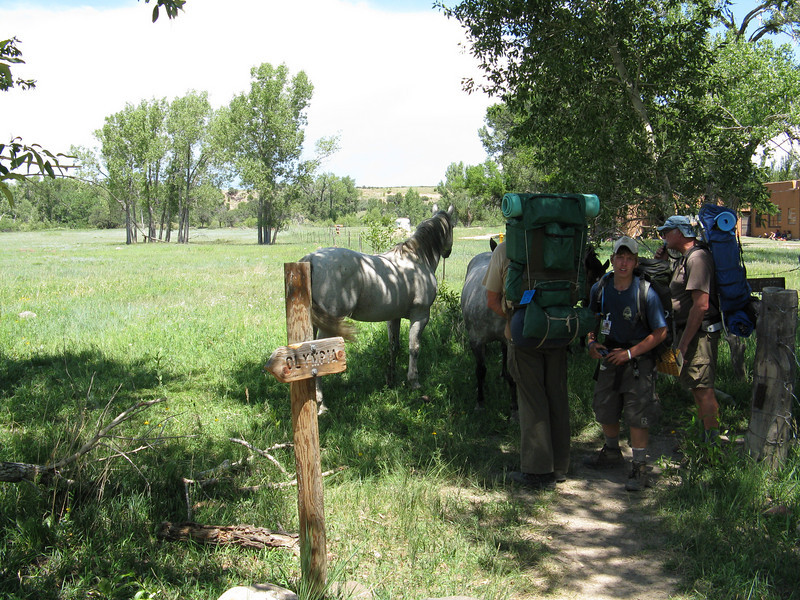 Checking out the friendly horses as we hit the trail.