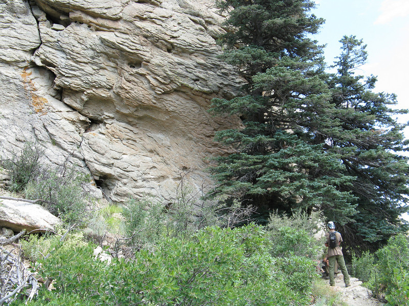 The trail led us up to a large rock outcropping.