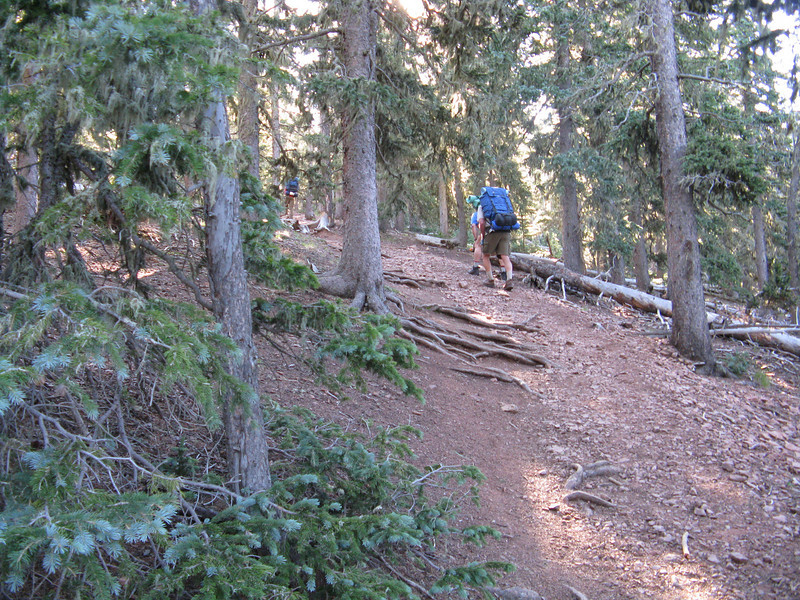 The trail to Mt. Phillips was very steep and loose footing.