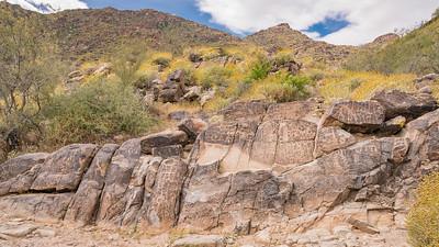 White Tank Mountain-Hike-Petroglyphs-06831