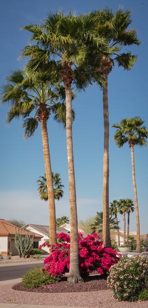 Phoenix, Prescott, Sedona