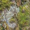 Prescott-AZ-Granite Dells Hike-06898