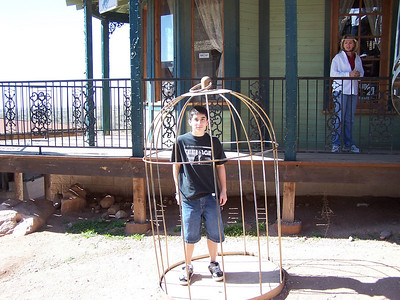 Alex thought this was for the birds (what kind of bird fit in that cage, anyway?)