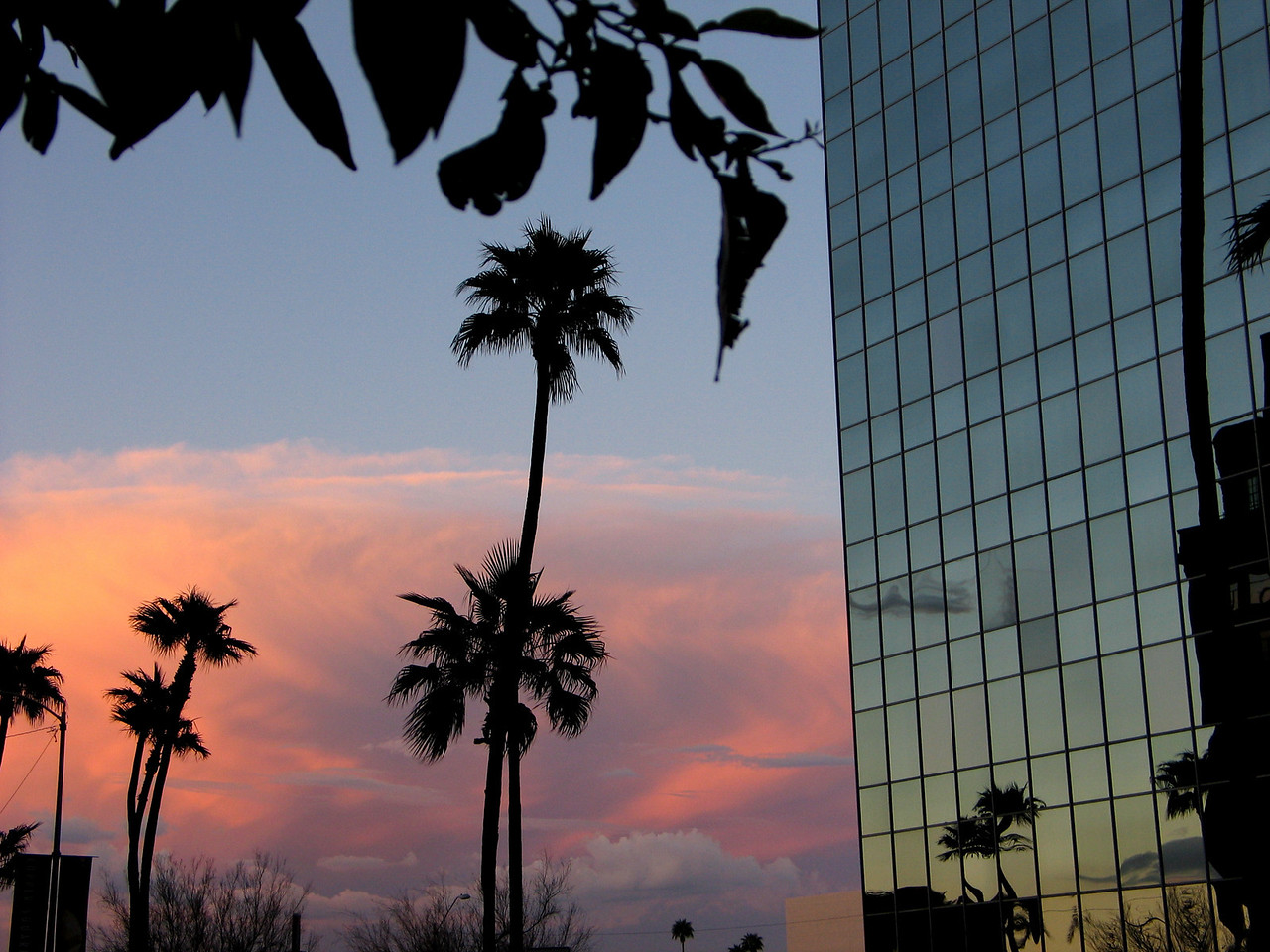 Sunset in downtown Phx, February 2005