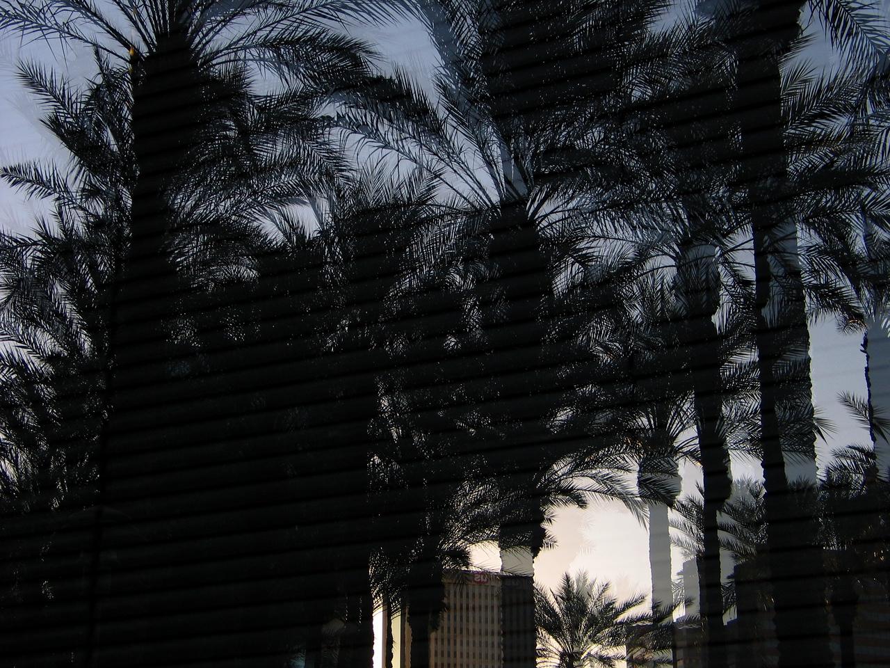 Van Vuran, Downtown Phx, February 2005