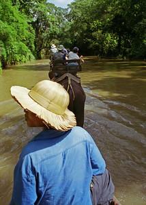 Maesa Elephant Camp, Chiang Mai, Thailand-2000