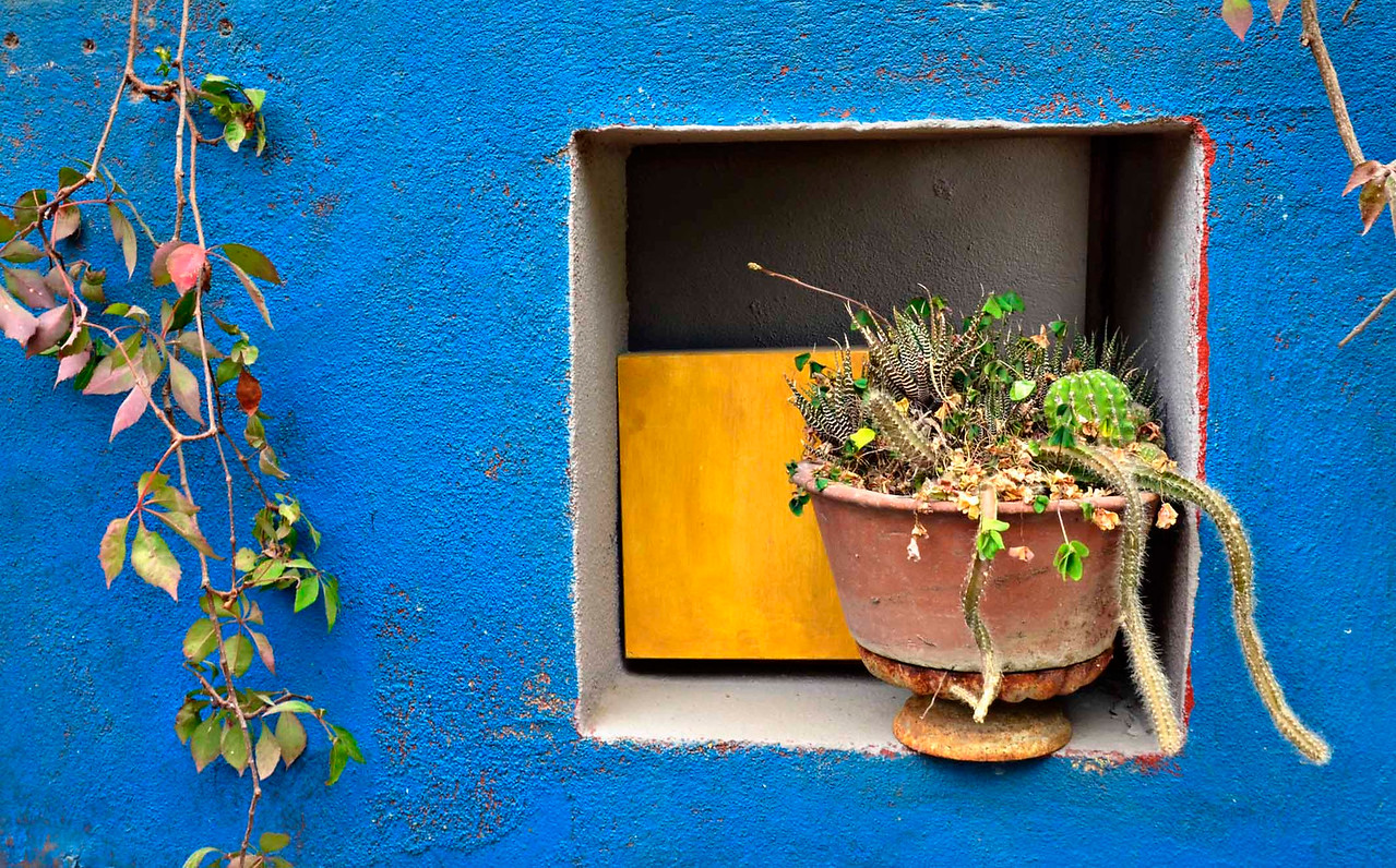 Wall Niche, Casa Dahlia, San Jose Del Cabo