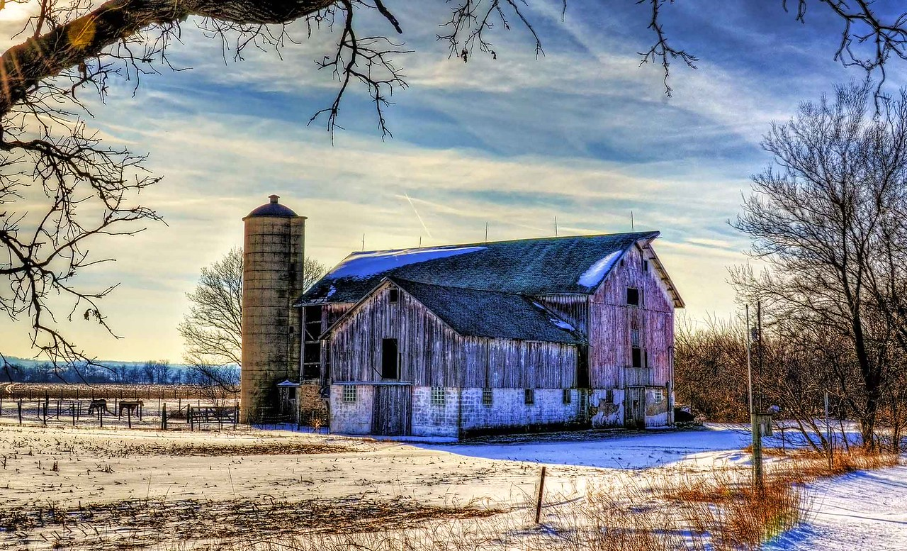 Old Barn in Winter, Southern Wisconsin