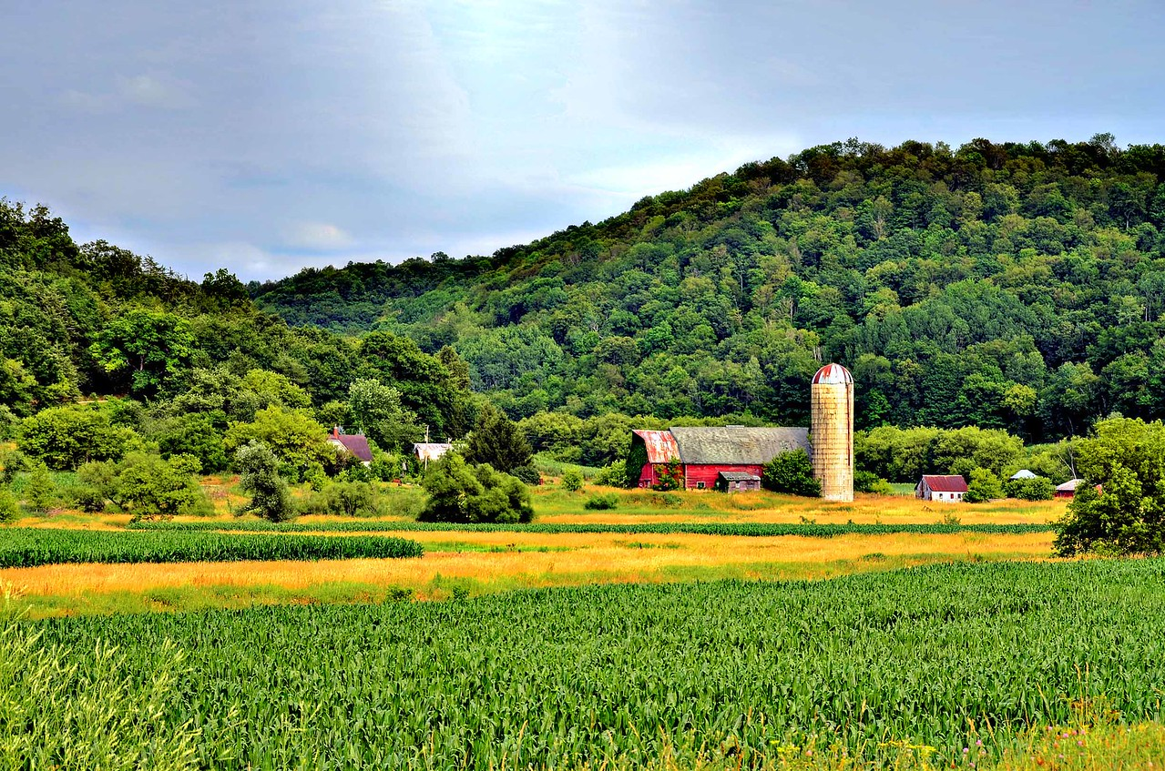Rolling hills of southwest Wisconsin.