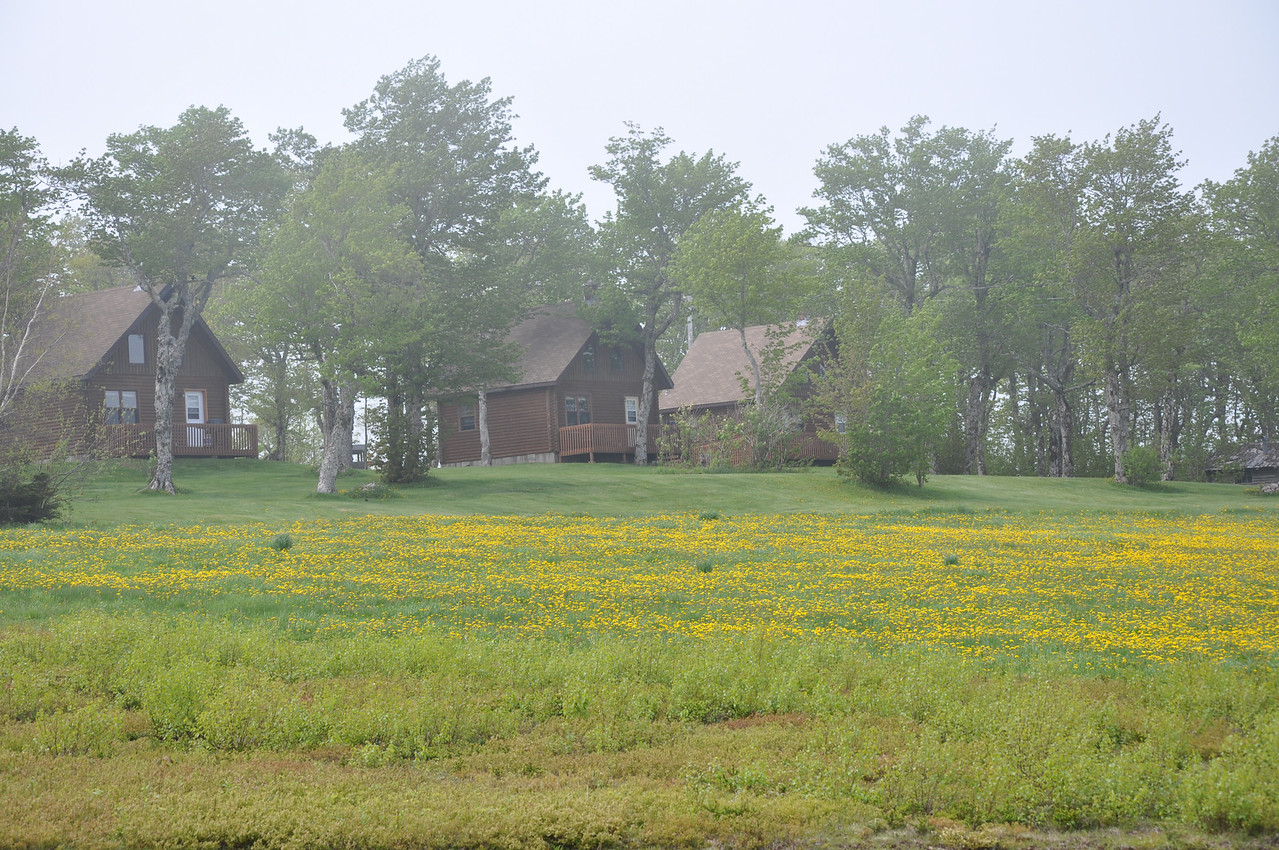 Stonehame Chalets in the morning mist