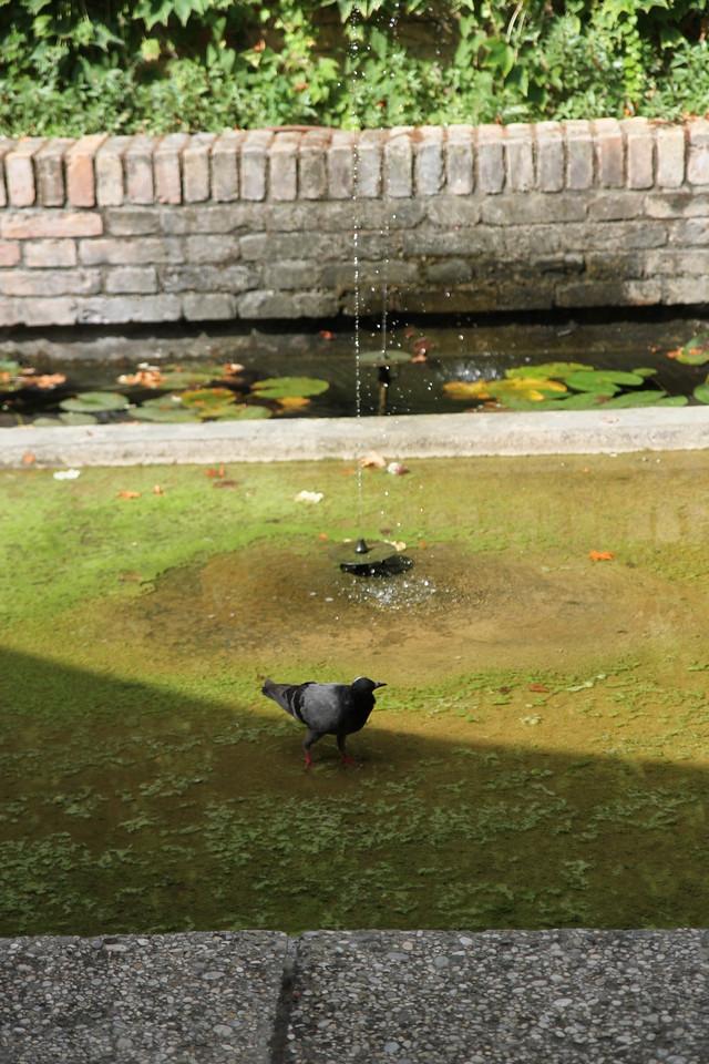 Biennale in Giardini
