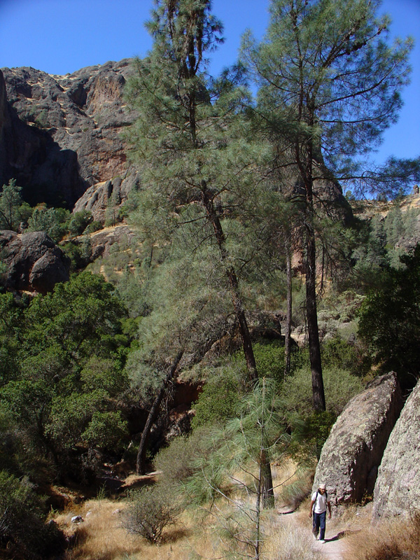Impressive monoliths along the 'Juniper Canyon' trail