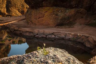 Bear Gulch Reservoir - Pinnacles National Monument.