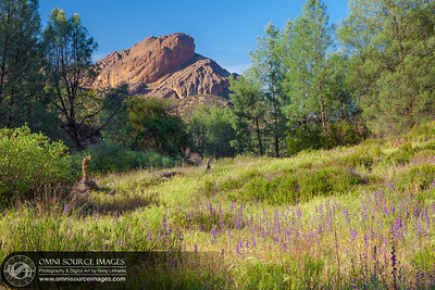 The Pinnacles National Park - Meadow and the Balconies