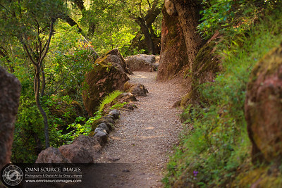 Hiking the Bear Gulch Trail at the Pinnacles National Monument.