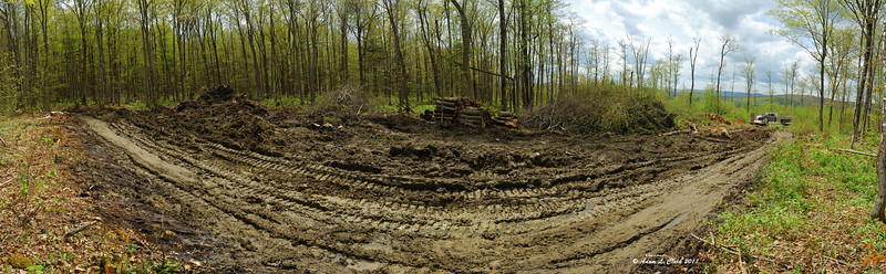 A panoramic of the cleared land so far