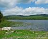 Big Brook Bog