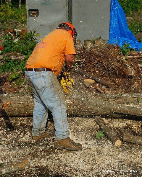 My father cutting one of the logs into 4ft sections