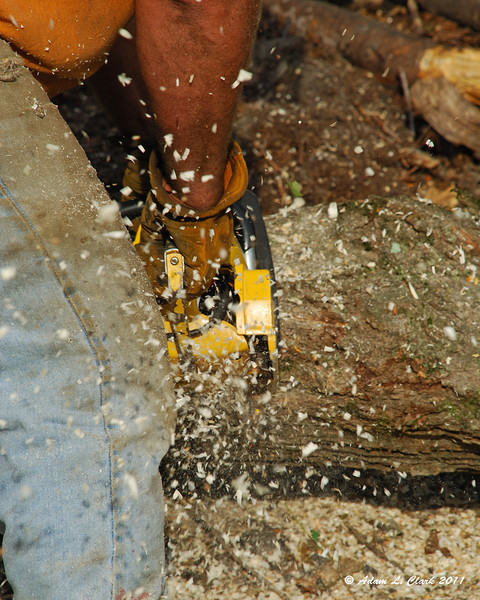 Making sawdust