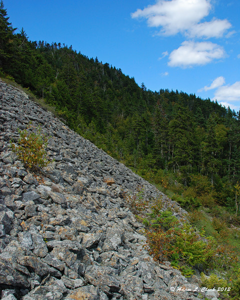 At the base of the rock slide on the east side of Mt. Magalloway after a thick bushwhack