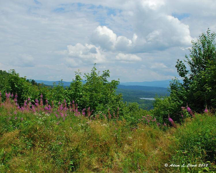 View near Shatney Mtn