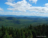View east towards Maine from Mt. Magalloway