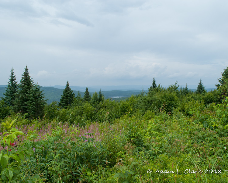 View from the ATV trail in Colebrook