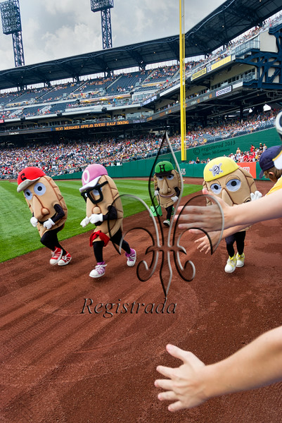 The Great Pierogi Race