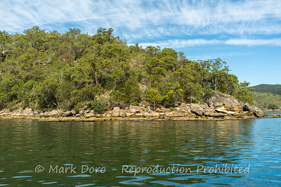 Shoreline detail, Pittwater, NSW