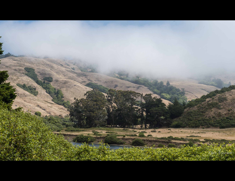 This is the Russian River valley just before it empties into the Pacific.  Go upriver and you will find other fluids flowing - some of the best wines.
