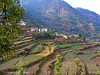 Terrace Farming, Solan, Himachal Pradesh