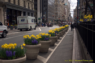 Flowers at Greeley Square