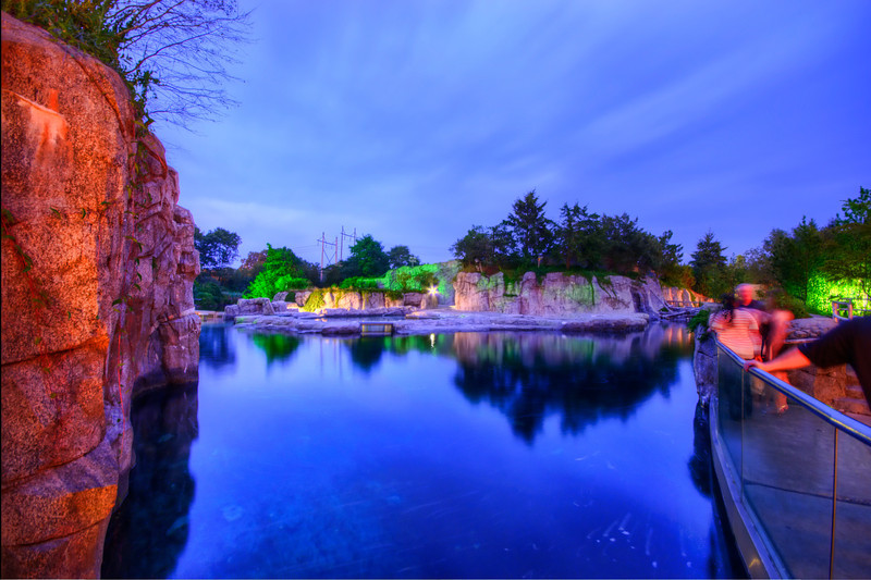 Mystic Aquarium - Beluga Whale Pool  | Mystic, CT | 8/25/2011