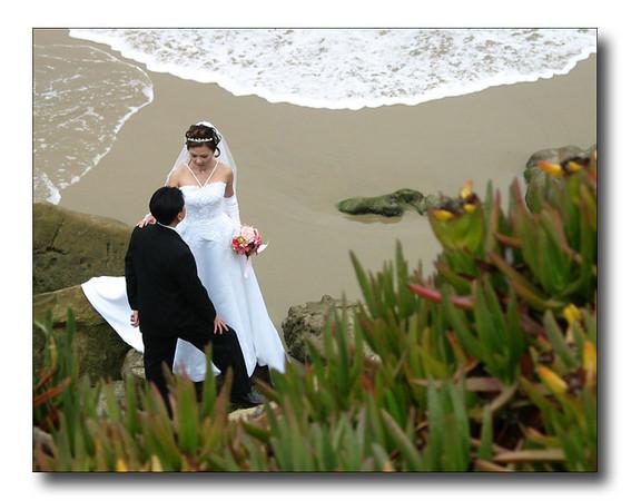 California BeachwareltbrgtIMG_3645w (32259938)
