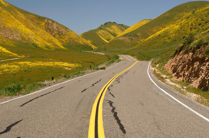 Winding Road, Carrizo Plains<br /> (California, 2006)