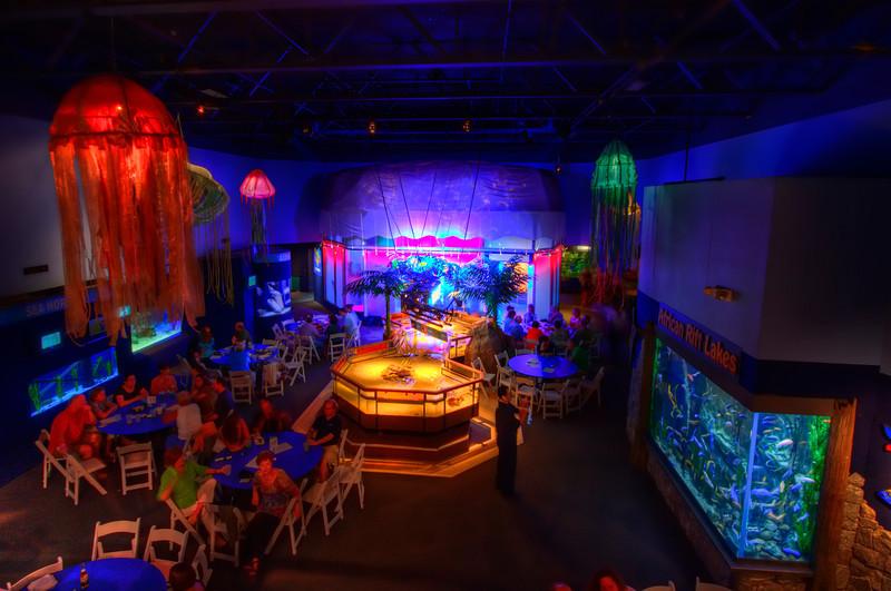 Mystic Aquarium - Cocktails & Whales   Mystic, CT   8/25/2011