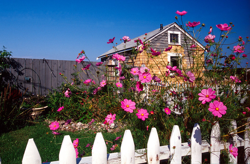 White Picket And Flowers, Rockport<br /> (Massachusetts, 2003)