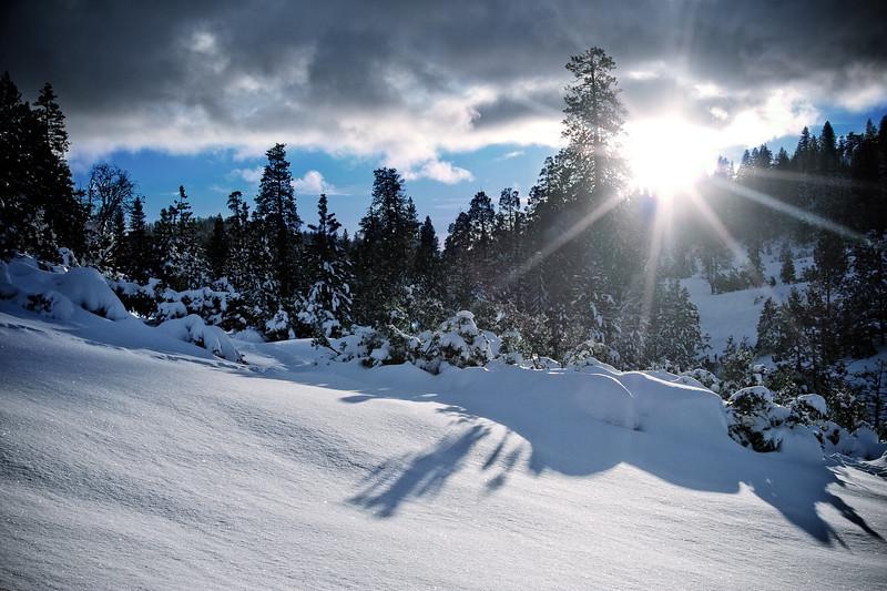 Snowscape near Mi-Wuk Village, California
