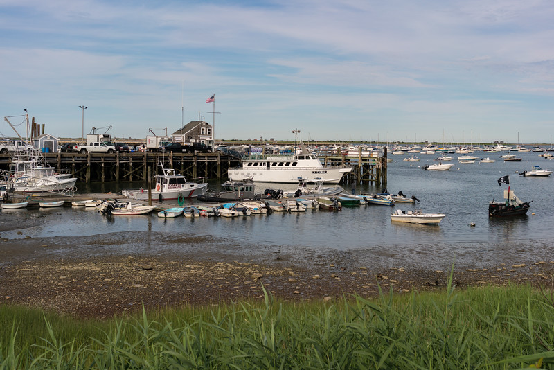 Town Wharf low tide