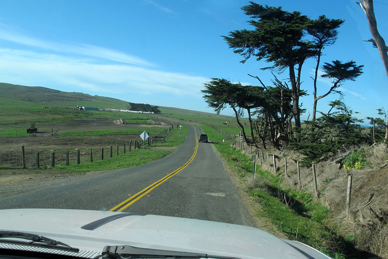 Driving on the Francis Drake Highway. It's really green in this area, most of the inland areas are dry due to the low amount of rainfall this year.