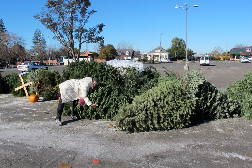 The next morning I helped Sooz toss out her Xmas tree before going out to breakfast.