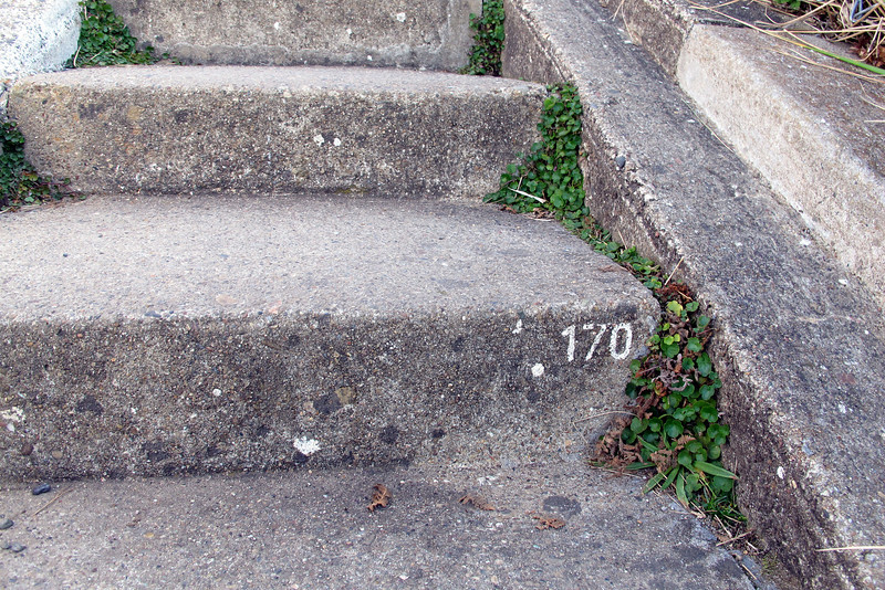 Back on the stars heading back up. I didn't notice it on the way down, but every once and a while the stairs had numbers on them. Near the bottom, it was over 300, guessing it lets people know how much stairs remain to get you to the top.