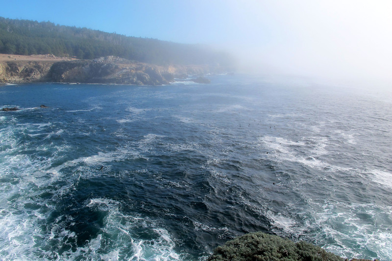 At Salt Point, this photo was taken from the parking lot. The fog was hanging along the coastline.