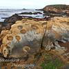 Rock formation at coastline, Point Lobos State Park, California
