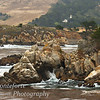 Point Lobos with Carmelite Monastery in the background.
