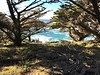 Headland Cove