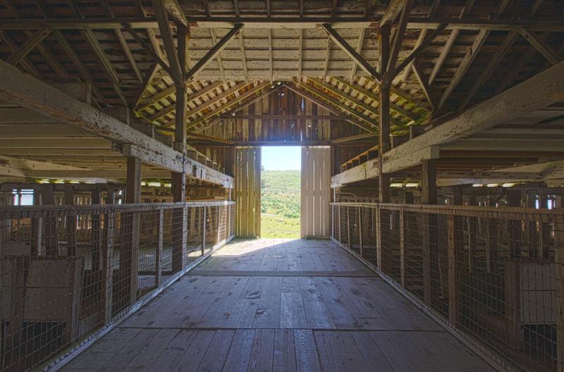 Pierce Point Ranch, Point Reyes, California