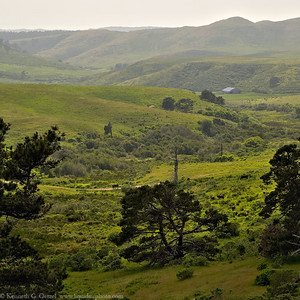 Point Reyes farmland.