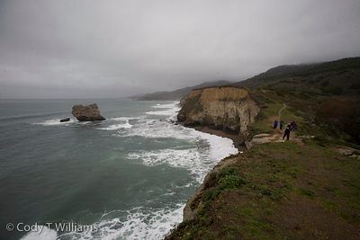 Scenes along the Bear Valley Trail, Point Reyes National Seashore in Northern California. January 1, 2010. / © Cody T Williams.