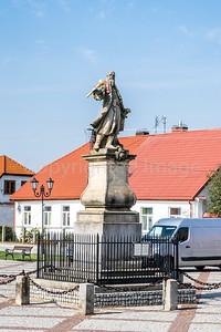 Statue of Stefan Czarnieck on Czarnieck square